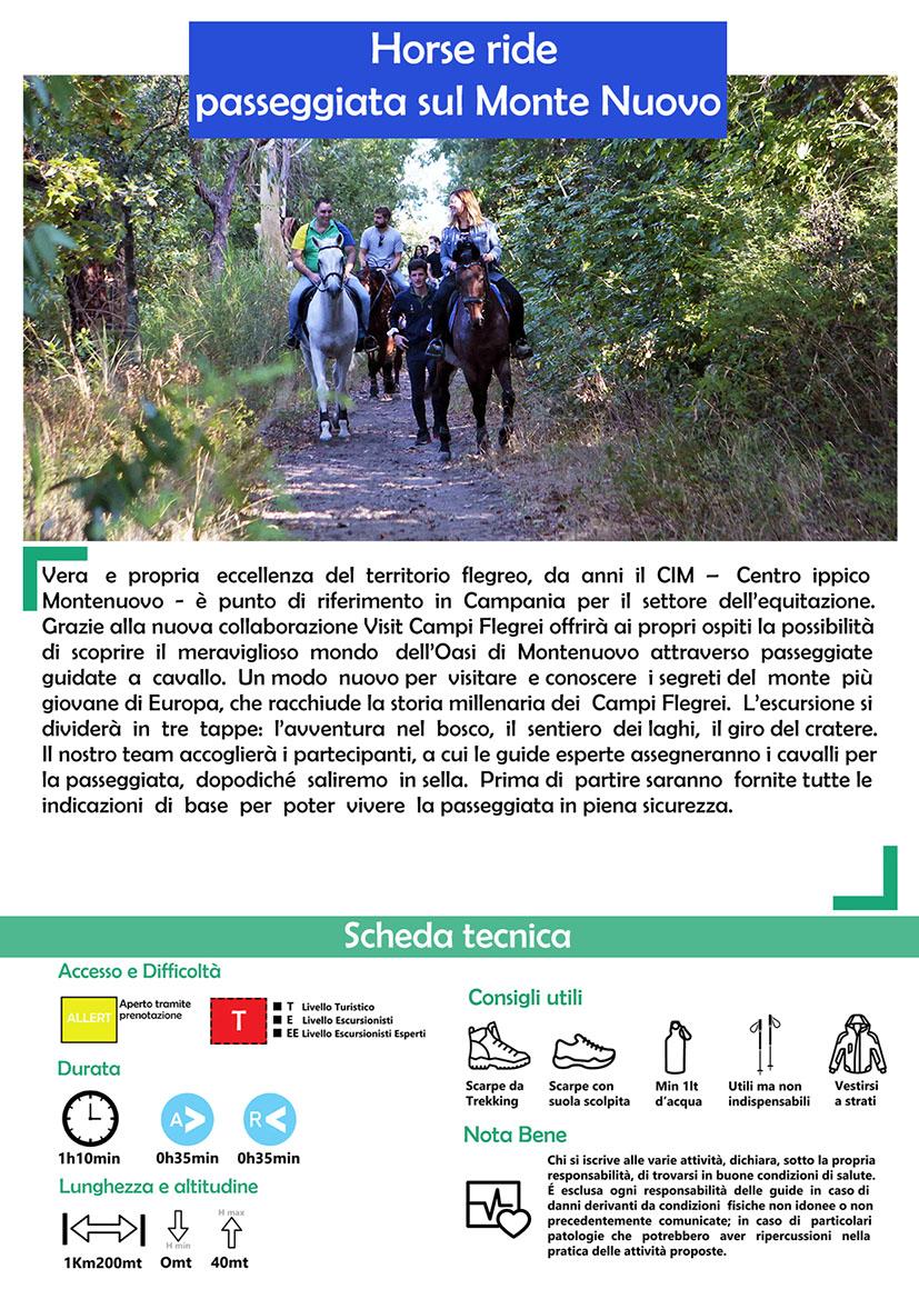 Horse ride Monte Nuovo