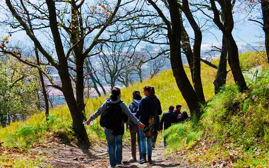 Il tetto dei Campi Flegrei – Il Monte Gauro