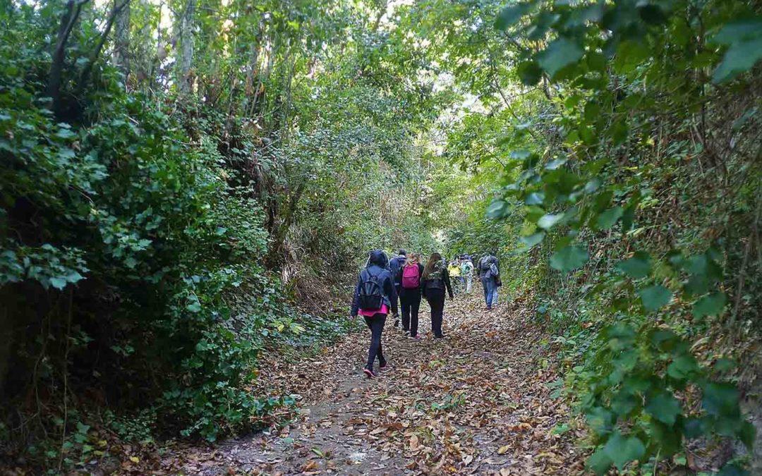 Trekking e walking nei Campi Flegrei